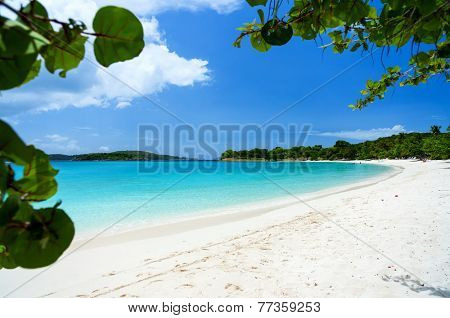 Beautiful tropical beach with white sand, turquoise ocean water and blue sky at St John, US Virgin Islands in Caribbean