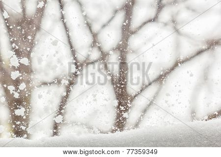 Winter Background With Snow-covered View  Outside The Window