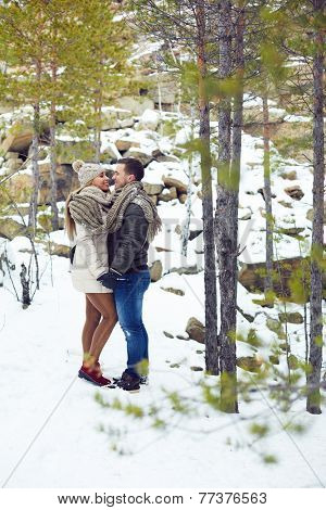 Young amorous couple having date in winter park