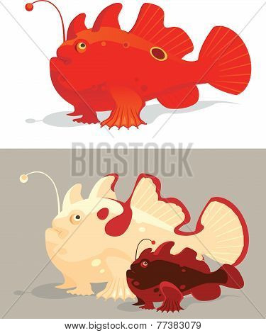 Frog fishes