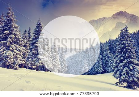Majestic landscape glowing by sunlight. Dramatic wintry scene. Carpathian, Ukraine, Europe. Beauty world. Creative design. Write your text. Retro filter. Instagram toning effect. Happy New Year!