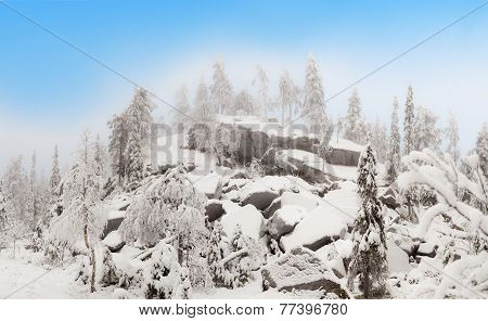 Cloud on the ruined rocks in winter forest.