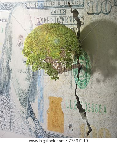 Tree Breaks Free. Good Concept For Freedom And Success Concept. Tree In Wall Of Dollar.