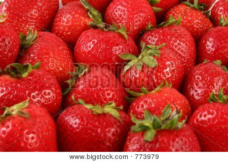 Group Strawberries