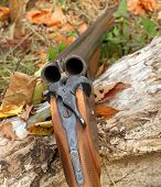 pic of shotguns  - A wooden retro shotgun in autumn style - JPG