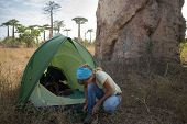 picture of baobab  - Hiker wearing shoes after night in the tent set by huge baobab tree in African savanna - JPG