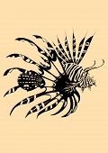foto of lion-fish  - Vector illustration of beautiful lion fish on isolated background - JPG