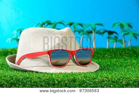 Hat With Sun glasses On Grass