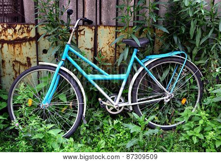 Lost Bicycle