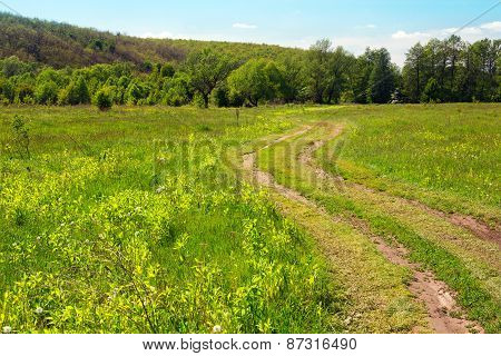 Landscape Of A Grassy Valley With Footpath, Hills With Trees