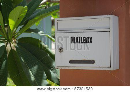 Mail Box On A Pole, Thailand