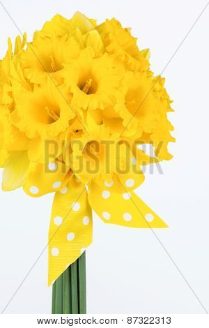Yellow Daffodil Bouquet With Bow