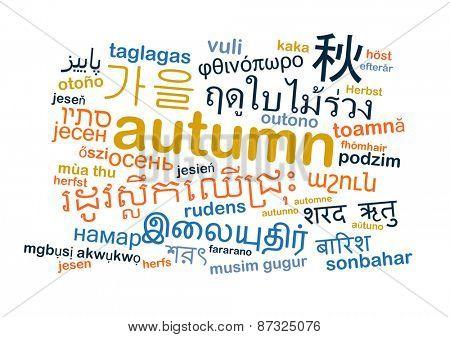 Background concept wordcloud multilanguage international many language illustration of translation autumn