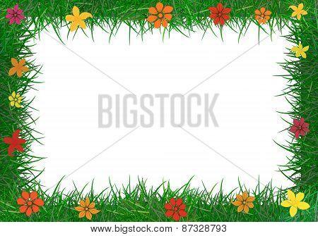 Frame Of Green Grass.