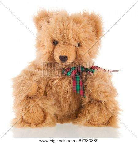 Stuffed fluffy bear isolated over white background