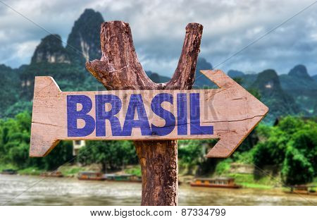 Brazil (in Portuguese) wooden sign with forest background