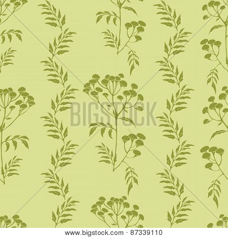 Tansy flowers pattern