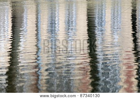 Abstract Reflection Of Trees In Water