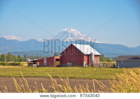 Red Barn And Rainier