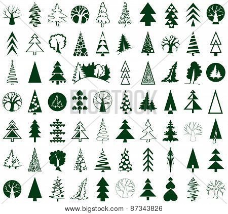 Coniferous And Deciduous Trees Icons On White