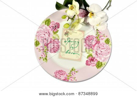 Spring Plate With Orchids