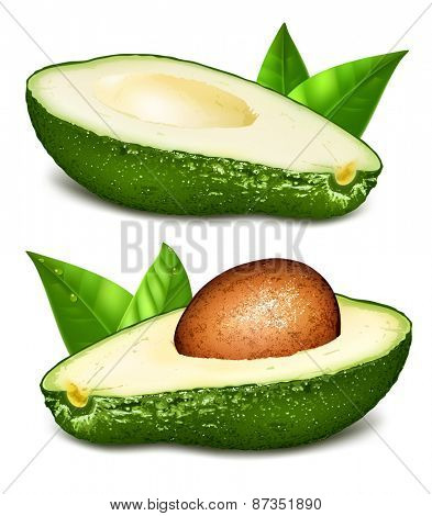Avocados with core and leaves. Vector illustration