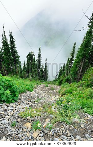 High Alpine Trail And Heavy Fog In Glacier National Park