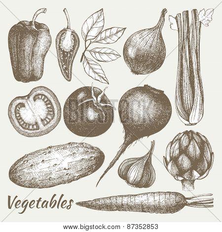 Healthy food vector illustration.