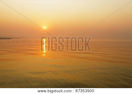 Beautiful Sunrise With Seagull