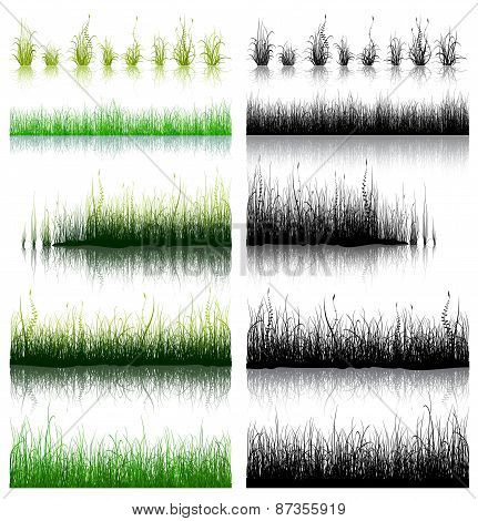 Big Set of Grass isolated on white background.