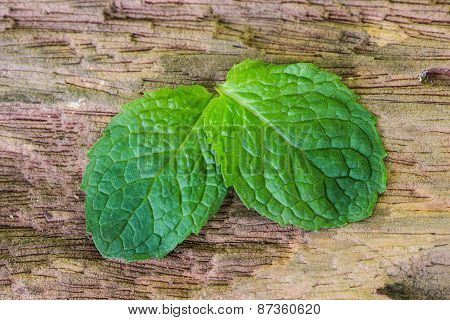 Pepper Mint Leaves On Old Wood Background