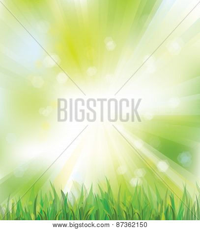 Vector green spring nature background.