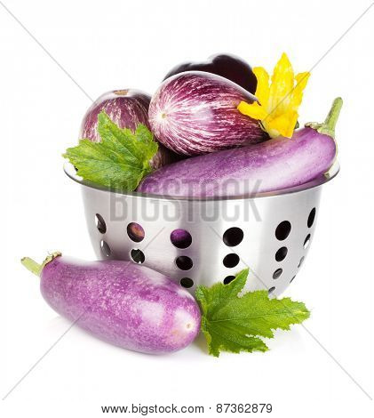 Fresh ripe eggplants in colander. Isolated on white background