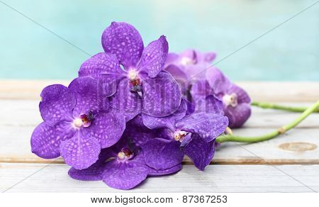 Purple Orchid On Wood Background