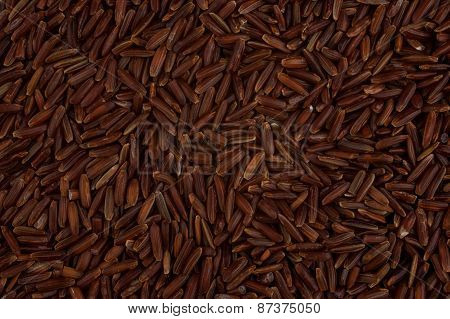 Red Rice Grain Texture Background