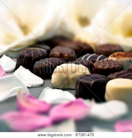 Chocolate truffles with white and pink rose petals