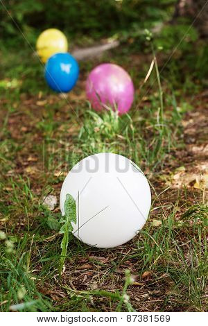 Colorful Ballons Laying On The Forest Ground
