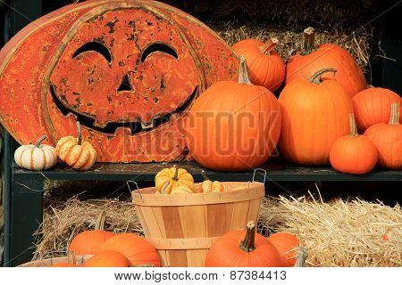 Fall's cornucopia