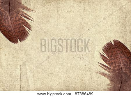 Old Vintage Paper Texture Background With Feather