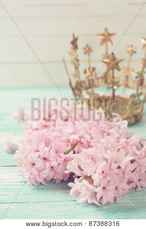 Postcard With Elegant Hyacinths  Flowers