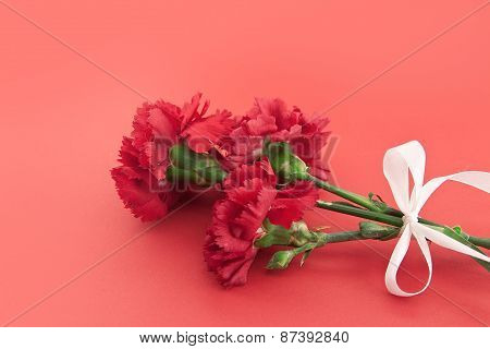 Three Flower, Red Carnations With White Ribbon On Red Background.