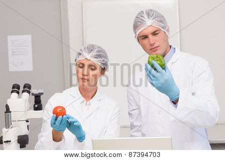 Scientists examining attentively green pepper and tomato in laboratory