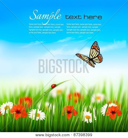 Nature summer colorful flowers with butterfly. Vector illustration.