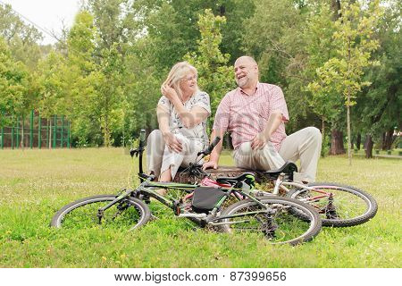 Happy Elderly Couple Relaxing