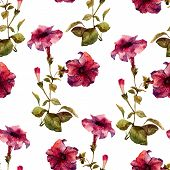 foto of petunia  - Beautiful vector pattern with nice petunia flowers - JPG