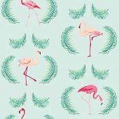 stock photo of flamingo  - Flamingo Bird Background  - JPG