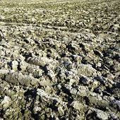 foto of plow  - Plowed field in springtime - JPG