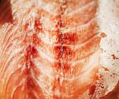 picture of tilt  - Fresh salmon filet extreme close - JPG