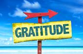 stock photo of humility  - Gratitude sign with beach background - JPG