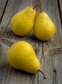 picture of harvest  - Fruit background - JPG
